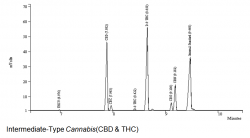 GC - Immediate-Type Cannabis - OleMiss.png